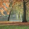 Autumnwater