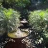 Round wells 2